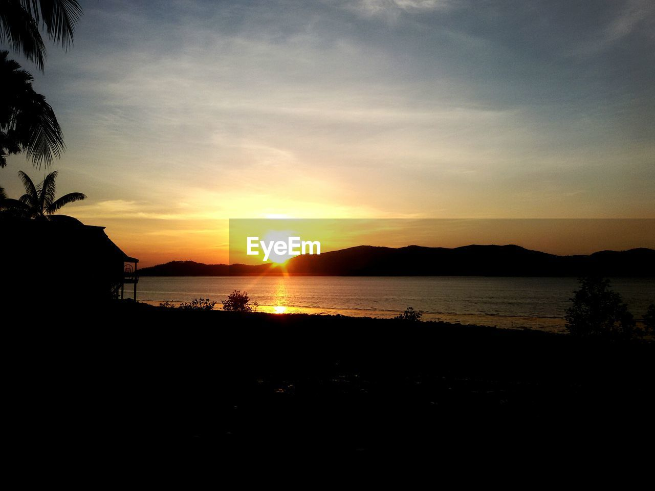 sunset, silhouette, water, beauty in nature, scenics, sea, nature, sky, tranquility, tranquil scene, sun, outdoors, no people, beach, horizon over water, tree