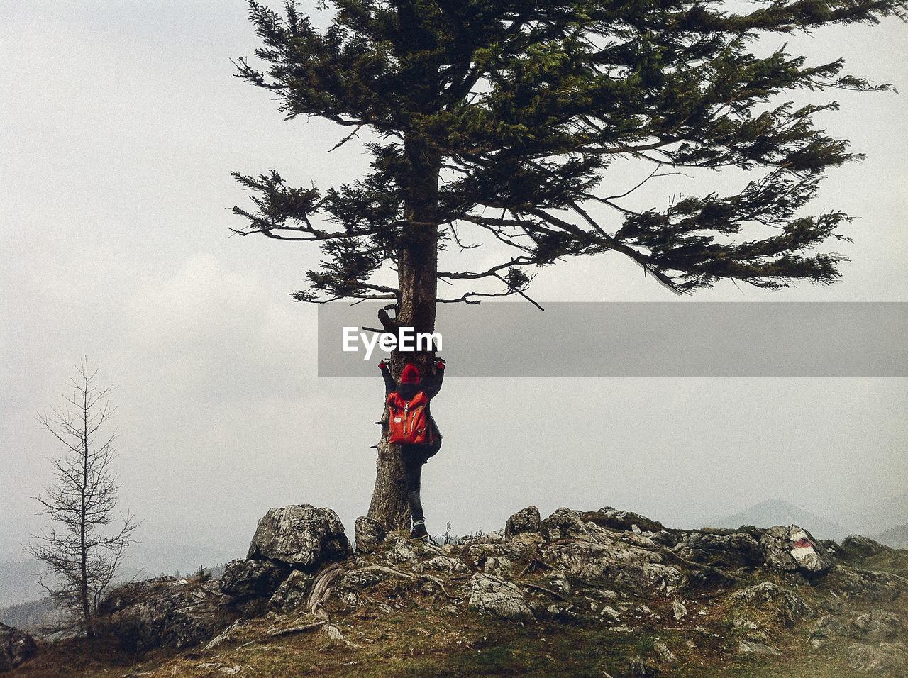 MAN STANDING ON TREE AGAINST SKY
