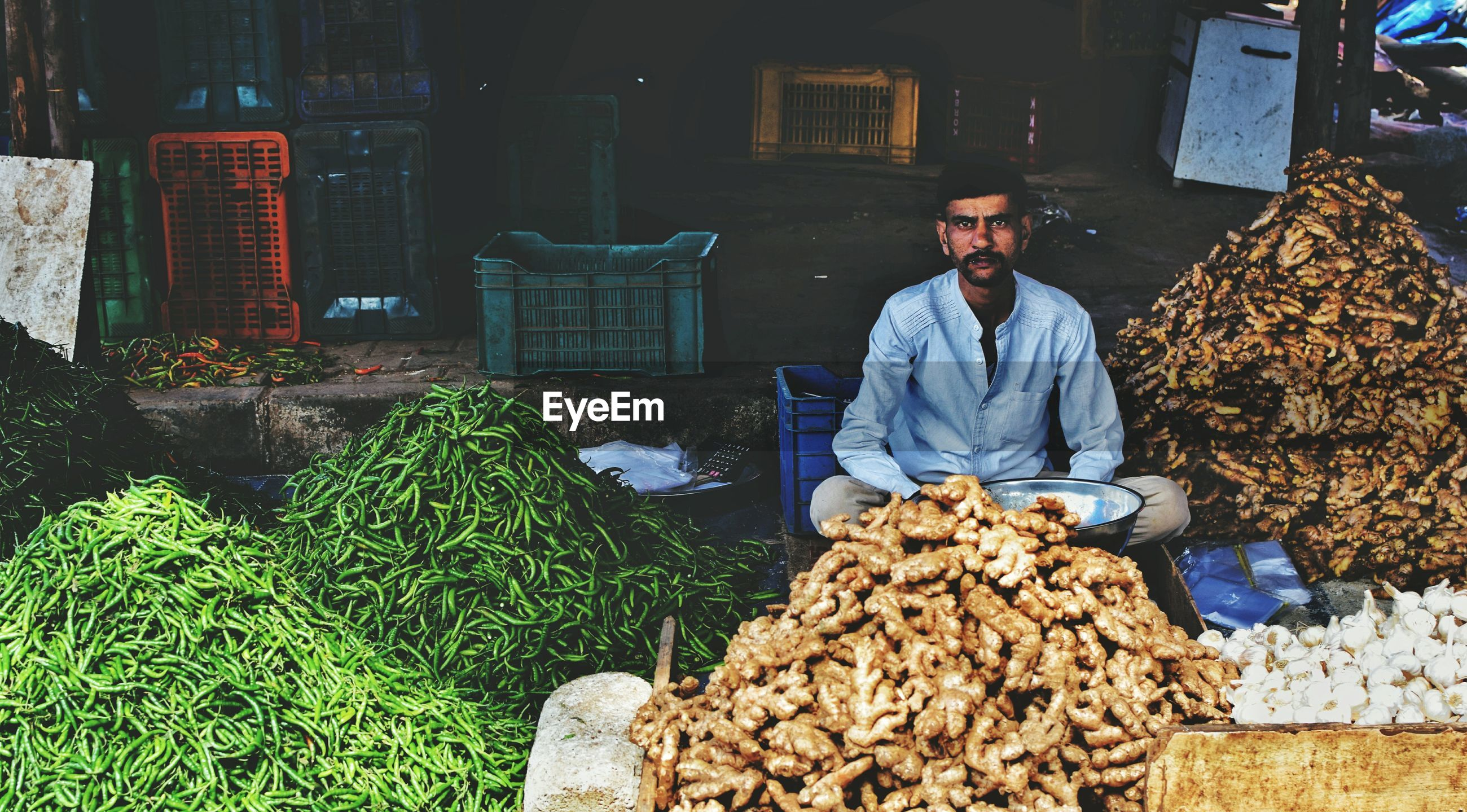Portrait of vendor with vegetables in market