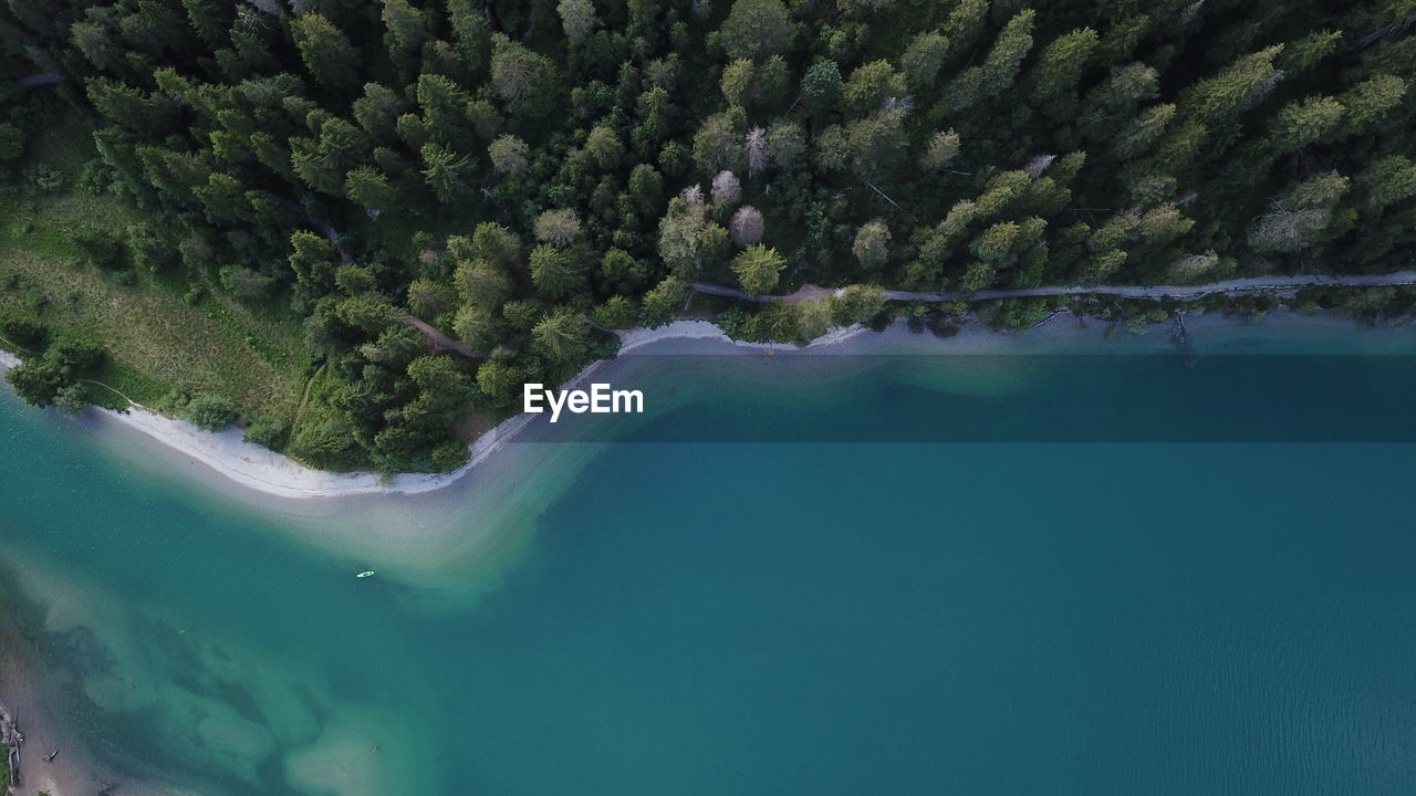 Aerial view of lake by forest