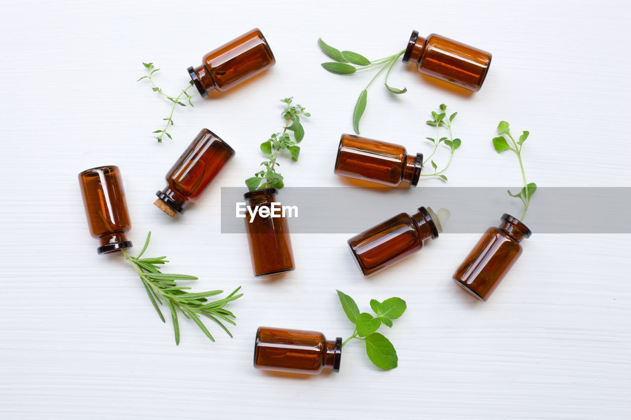 indoors, still life, white background, medicine, no people, high angle view, table, herb, plant, plant part, leaf, spice, food and drink, food, green color, studio shot, ingredient, directly above, healthcare and medicine, choice