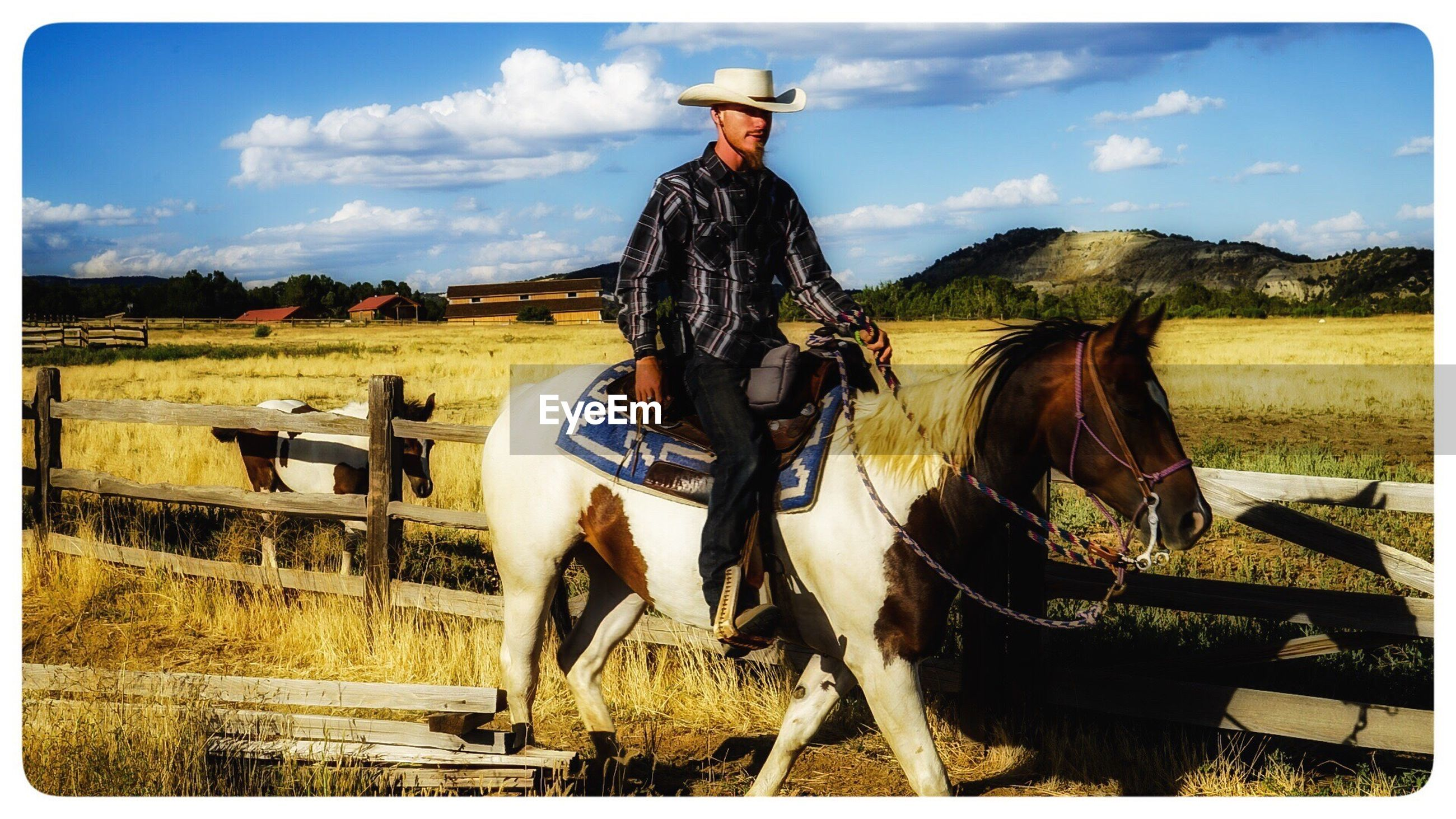 horse, sky, riding, full length, domestic animals, working animal, real people, outdoors, mammal, one person, cloud - sky, tree, livestock, saddle, day, cowboy hat, men, grass, nature, adult, people