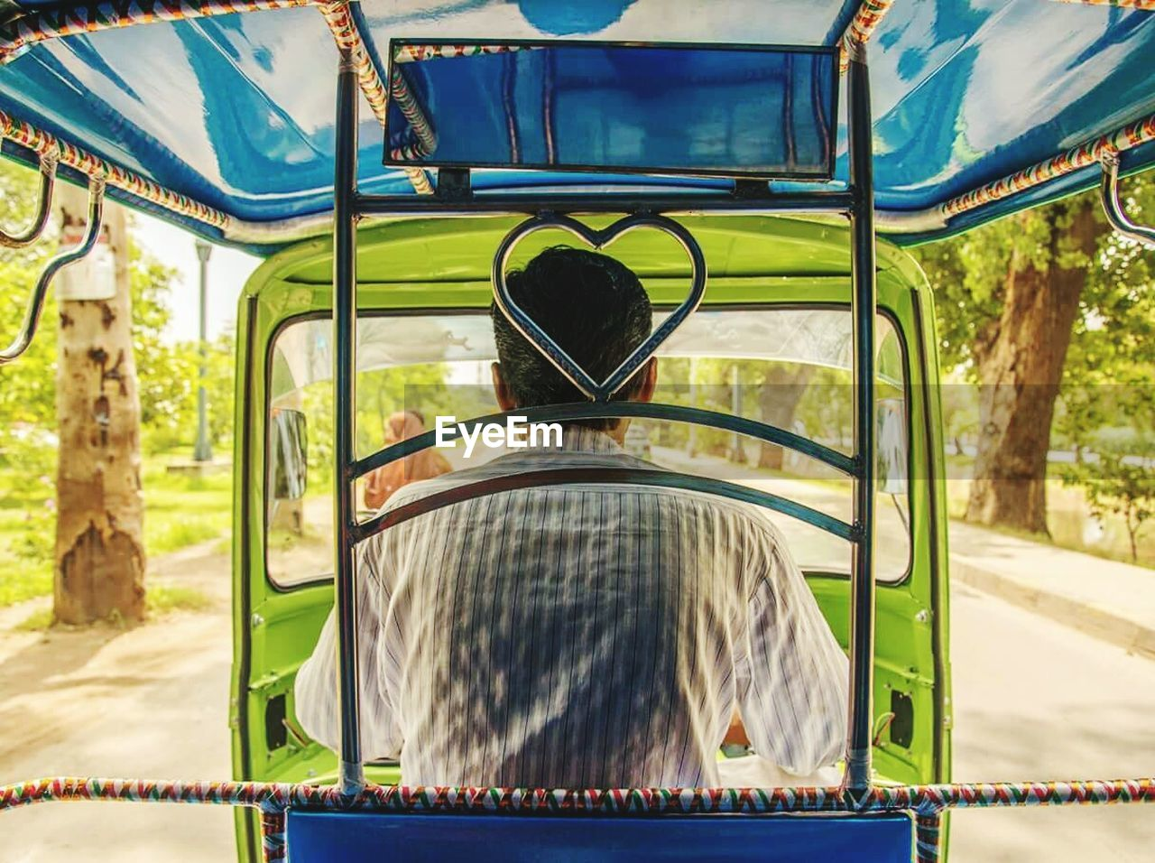 mode of transport, transportation, day, land vehicle, no people, outdoors, nature, animal themes, close-up, tree, mammal
