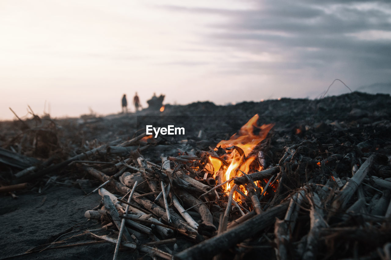 burning, nature, fire - natural phenomenon, heat - temperature, fire, flame, sky, bonfire, wood - material, log, orange color, wood, land, firewood, camping, outdoors, campfire, sunset, environment, close-up