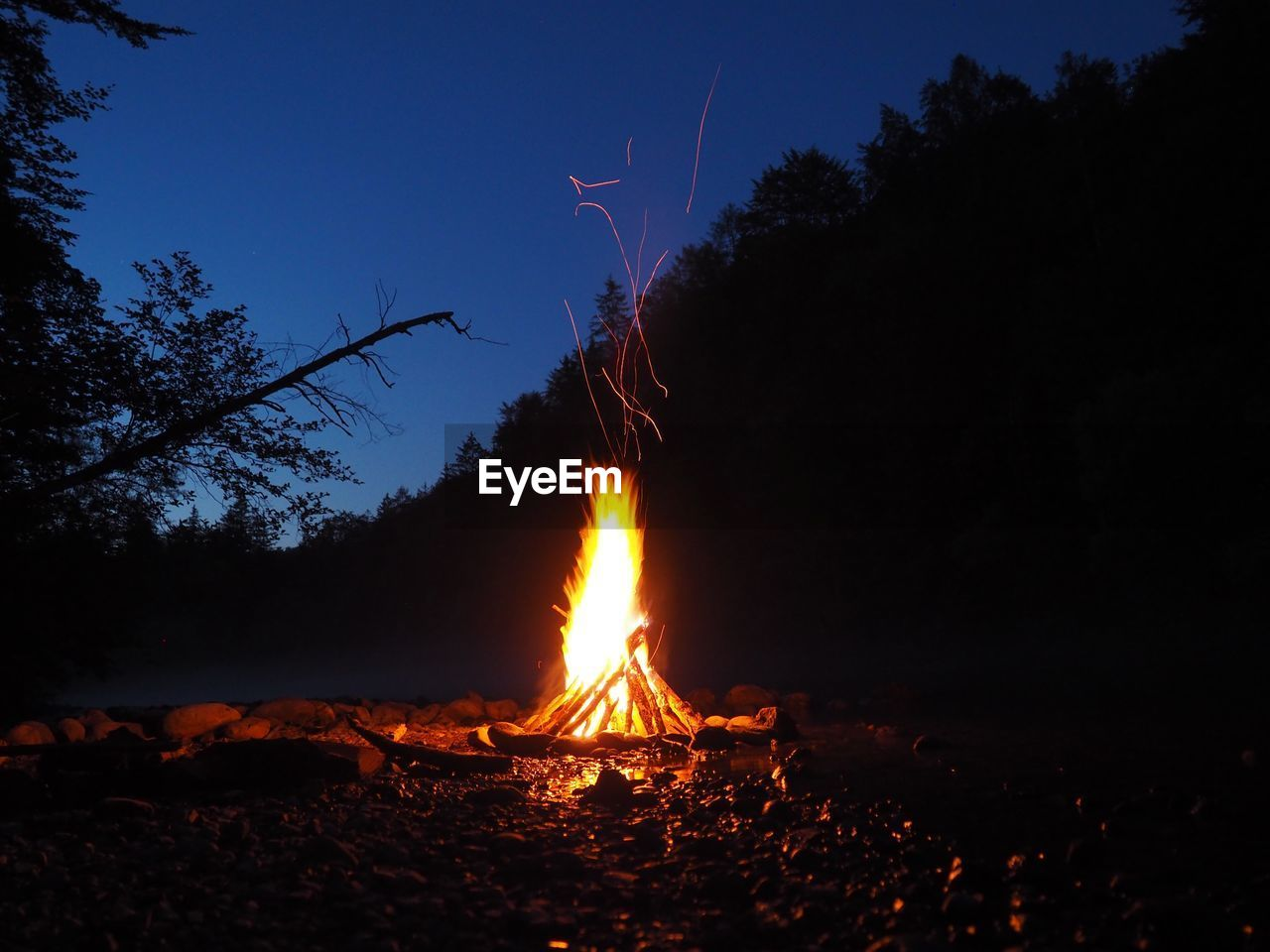 fire, burning, flame, fire - natural phenomenon, heat - temperature, tree, nature, land, sky, bonfire, night, glowing, campfire, no people, environment, field, wood, log, illuminated, plant, outdoors
