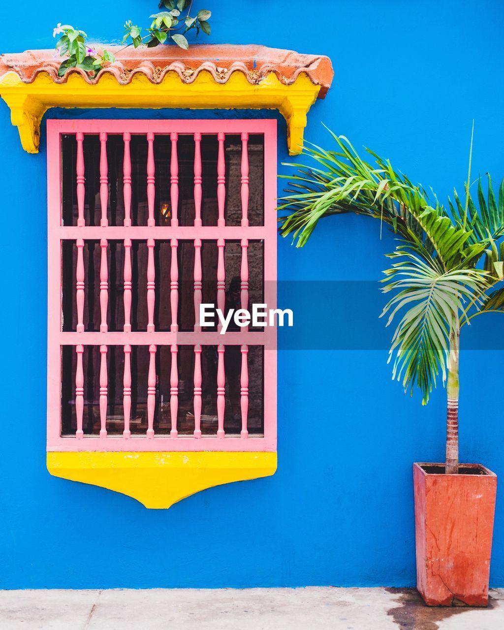 Colorful walls of cartagena
