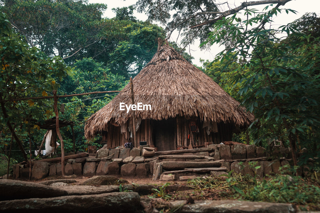 thatched roof, tree, plant, roof, built structure, architecture, hut, nature, land, building, no people, day, building exterior, forest, house, outdoors, village, growth, travel, tropical climate