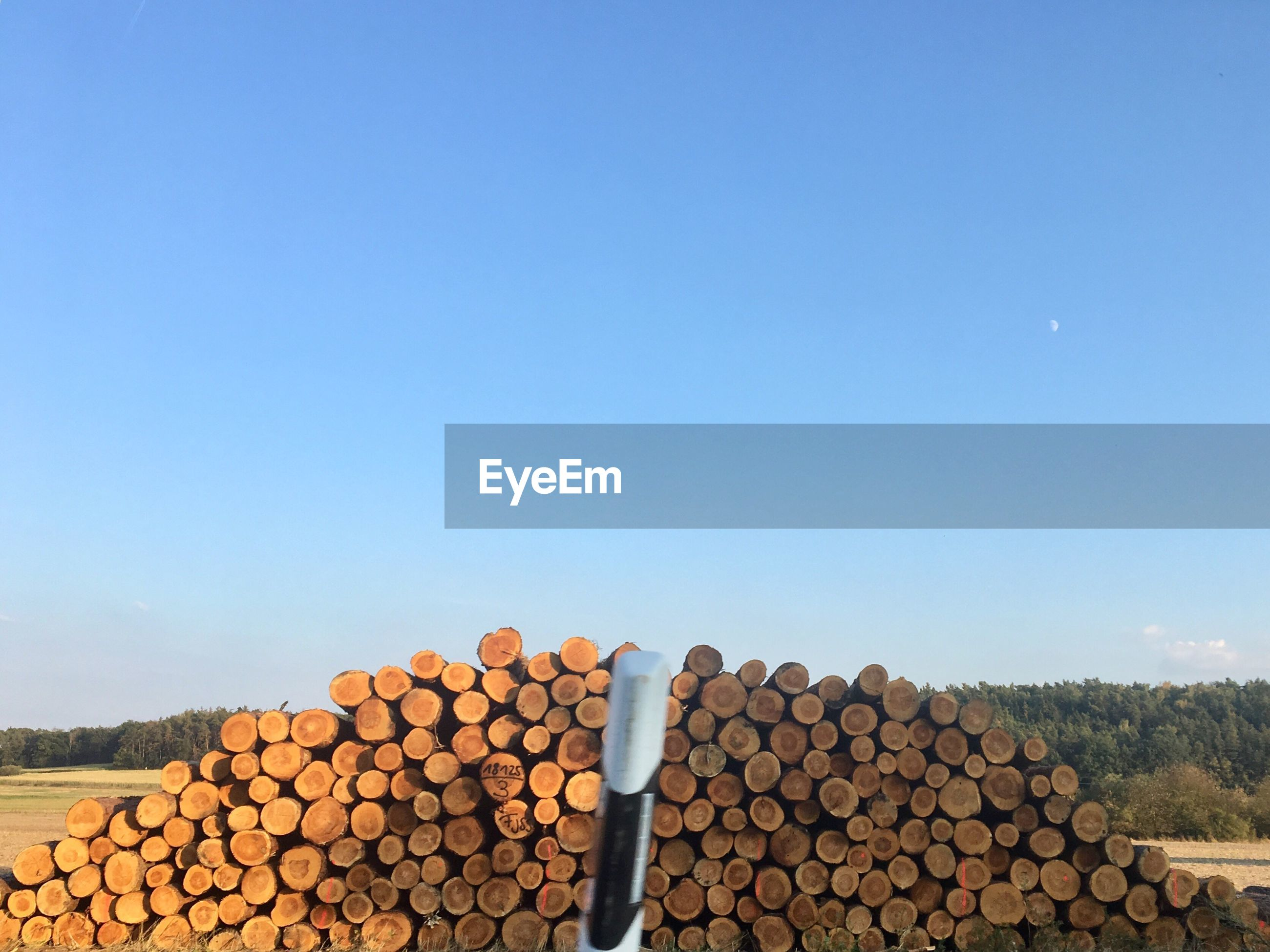 Stack of logs in forest against clear blue sky