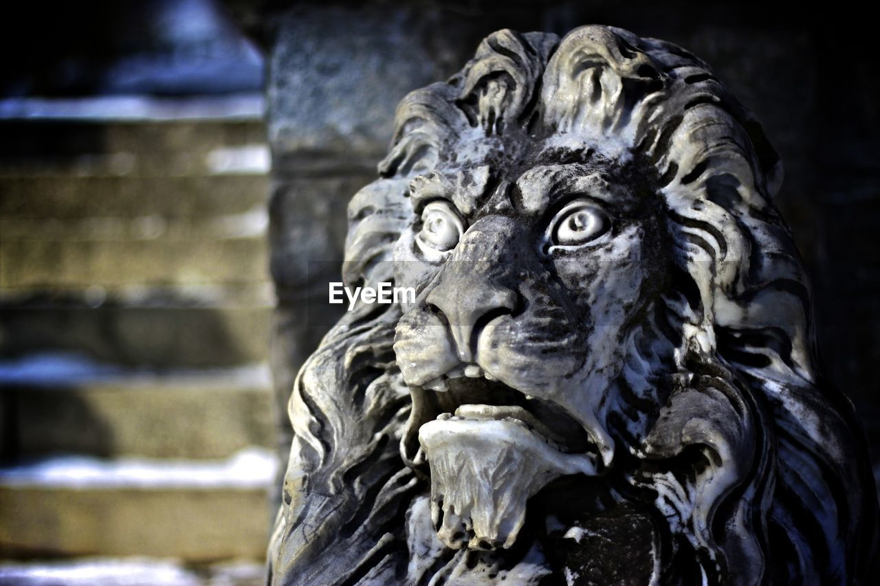 statue, sculpture, art and craft, focus on foreground, outdoors, no people, day, gargoyle, close-up, lion - feline