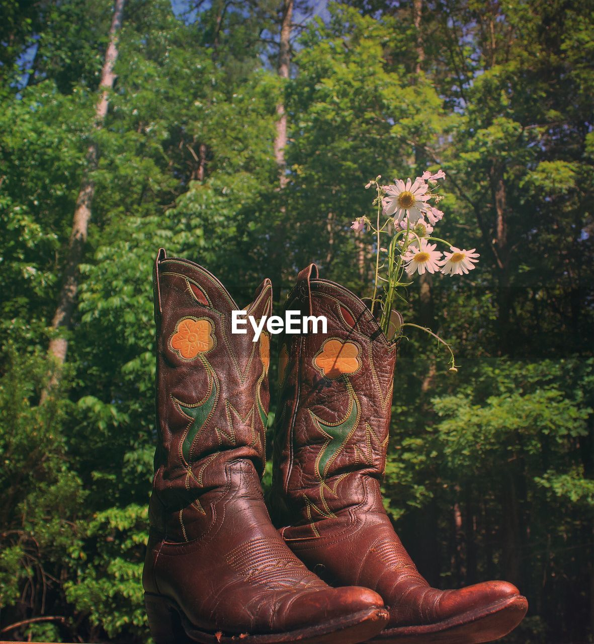 Flowers In Cowboy Boots Against Trees