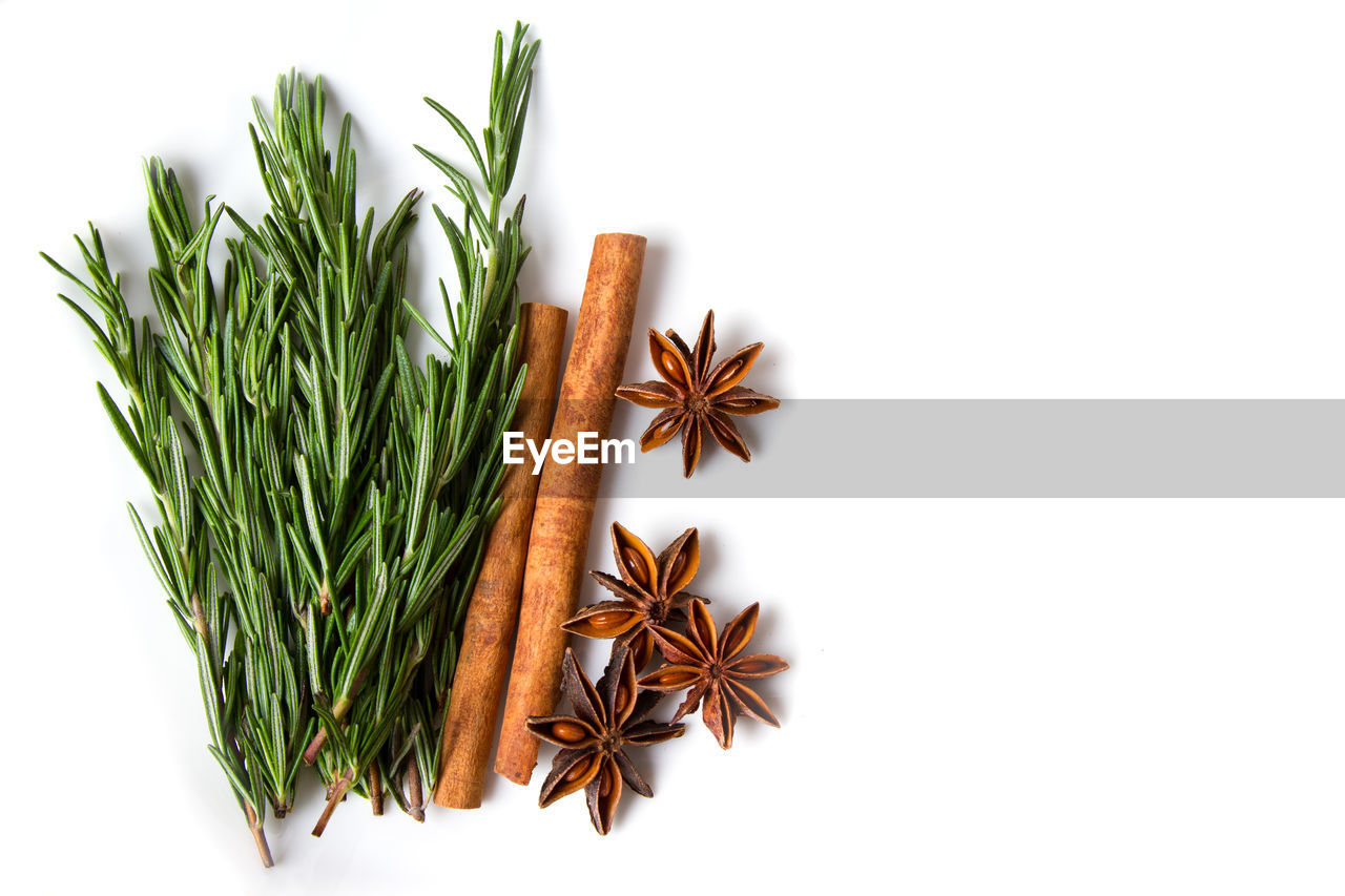 food and drink, white background, spice, studio shot, star anise, freshness, indoors, food, ingredient, still life, plant, no people, cinnamon, wellbeing, close-up, healthy eating, green color, raw food, star shape, cut out, herb, cardamom