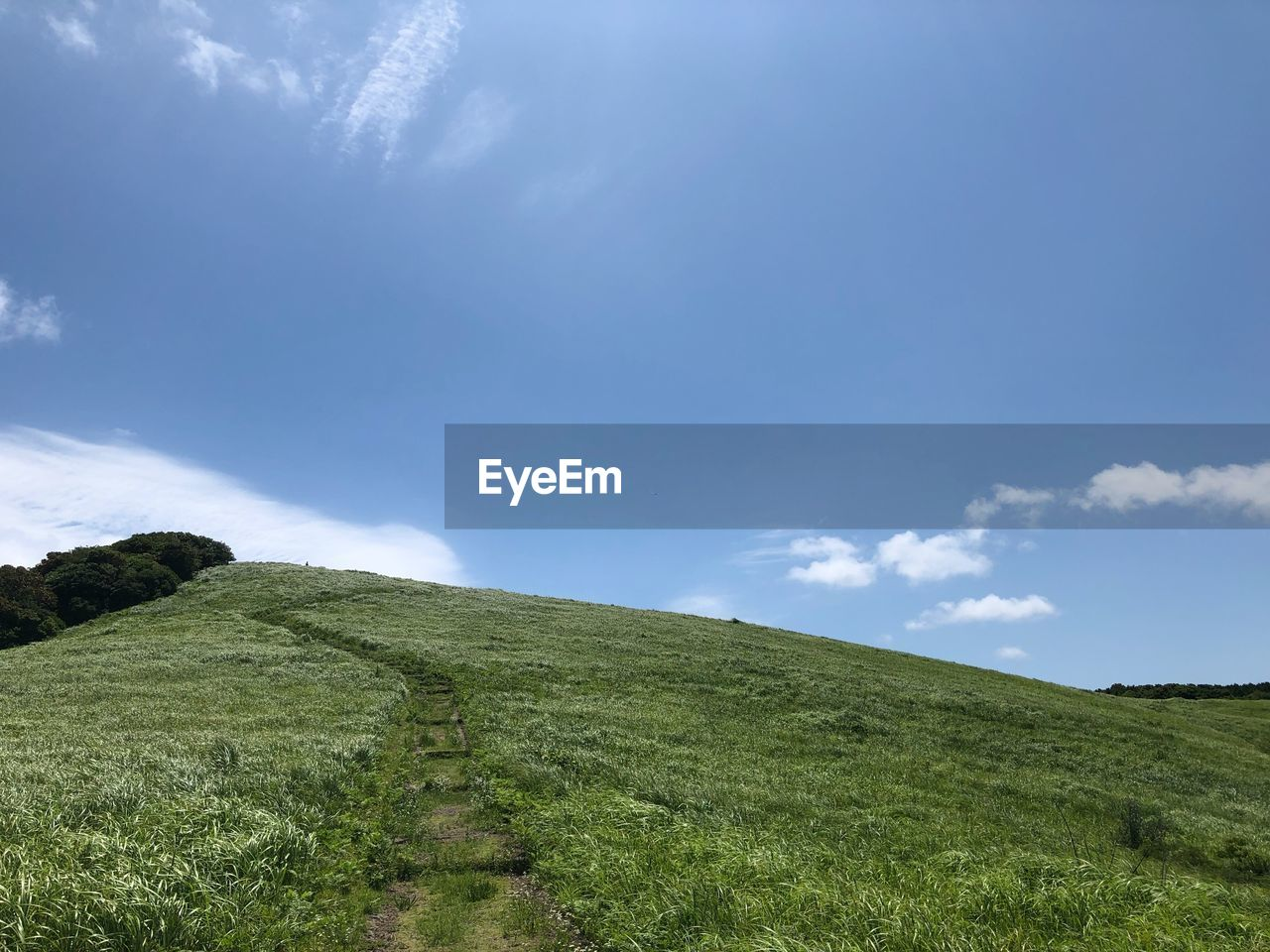 sky, grass, plant, landscape, cloud - sky, green color, tranquility, tranquil scene, beauty in nature, scenics - nature, environment, land, field, no people, non-urban scene, day, nature, hill, growth, outdoors, trail