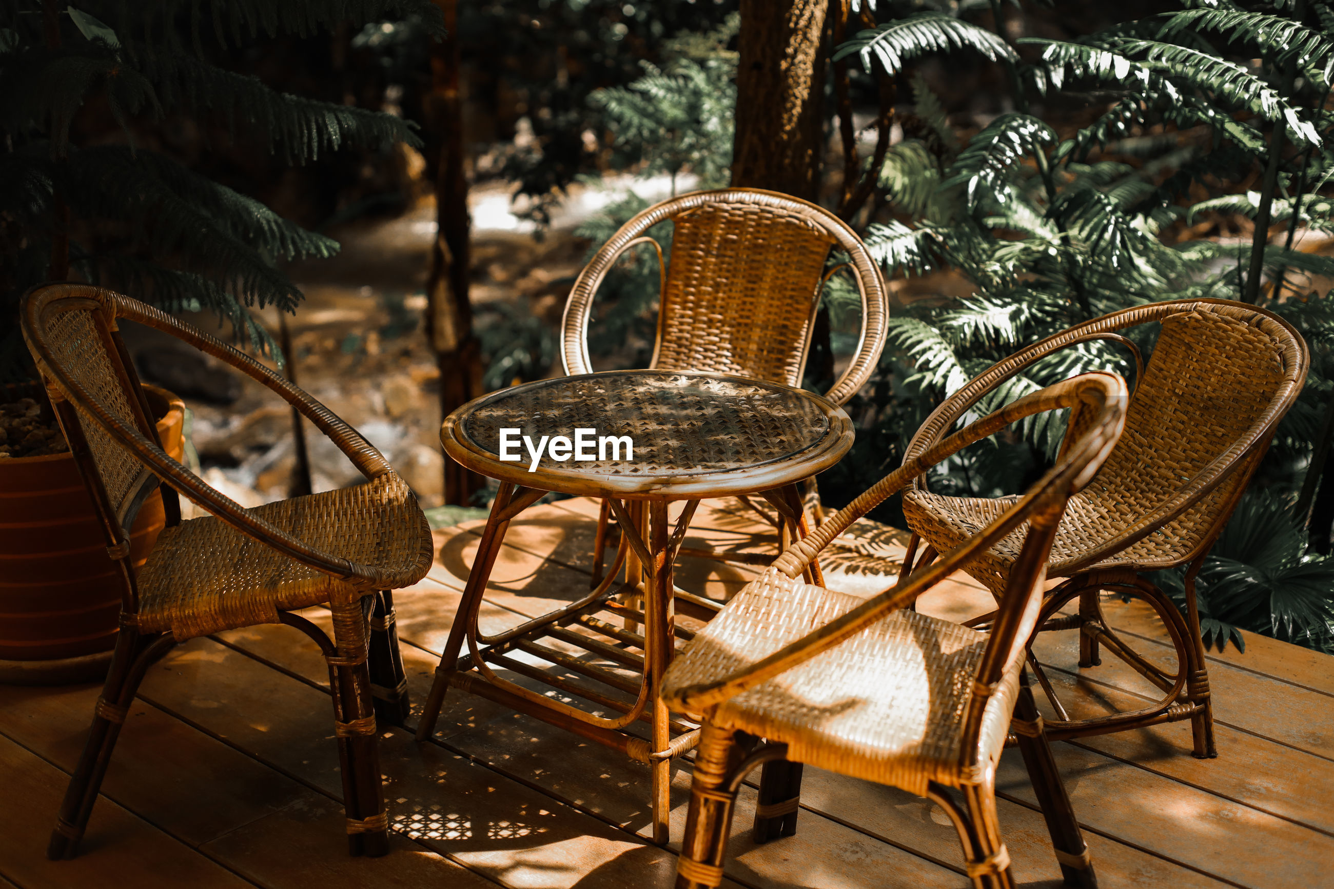 EMPTY CHAIRS AND TABLE AGAINST TREES