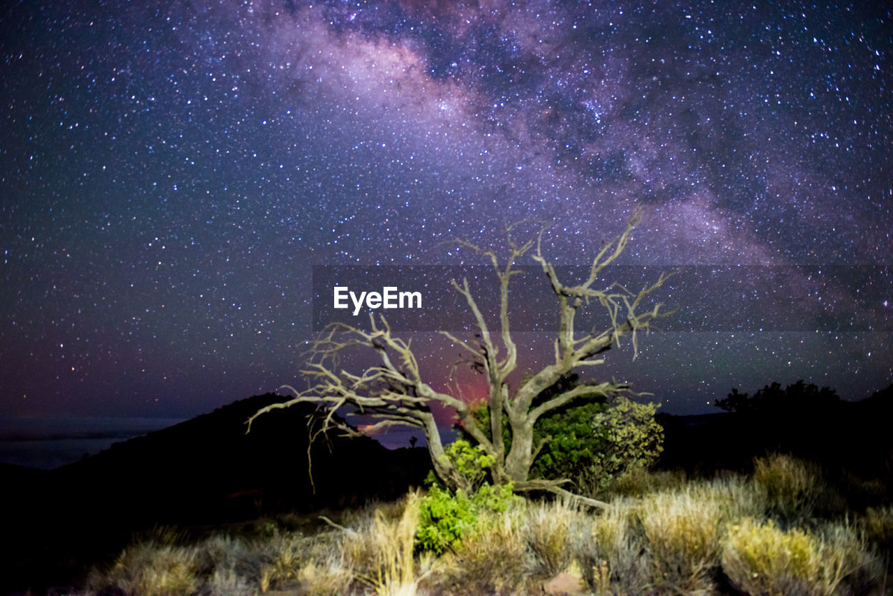 night, star - space, no people, milky way, astronomy, landscape, tranquil scene, tranquility, scenics, galaxy, outdoors, nature, sky, tree, illuminated, space, mountain, beauty in nature, constellation