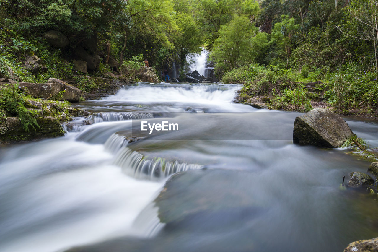 water, tree, motion, plant, scenics - nature, long exposure, flowing water, blurred motion, forest, beauty in nature, flowing, nature, waterfall, day, no people, land, river, rock, solid, outdoors, stream - flowing water, power in nature, running water, rainforest