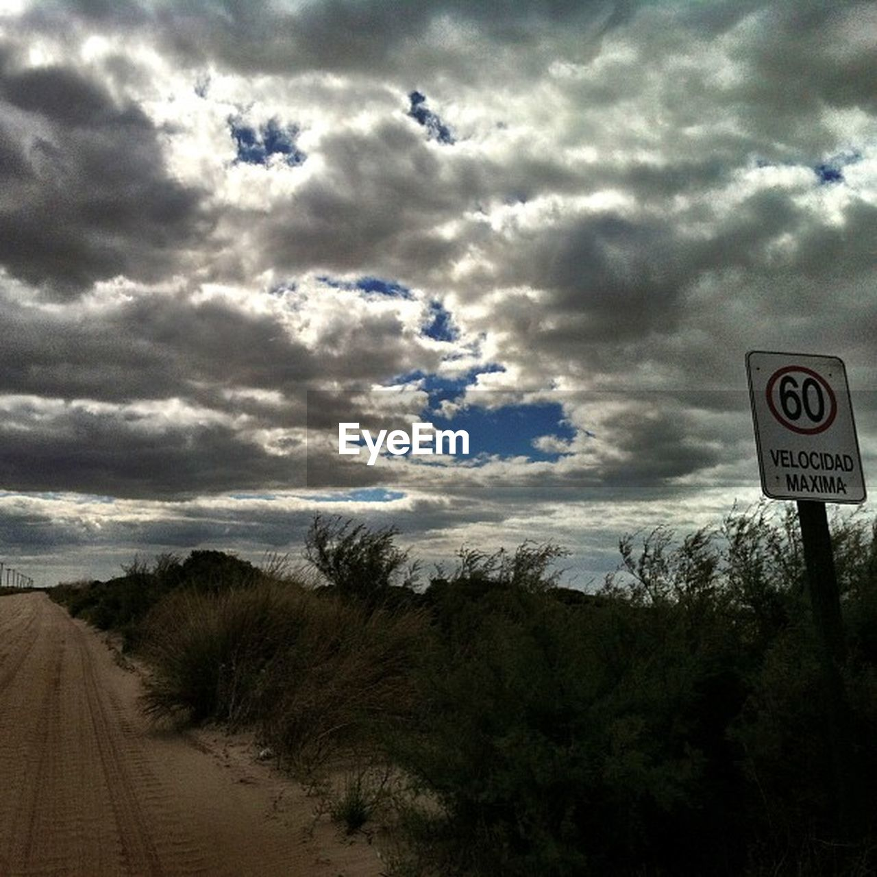 sky, cloud - sky, road, tree, text, communication, day, no people, road sign, nature, outdoors, growth