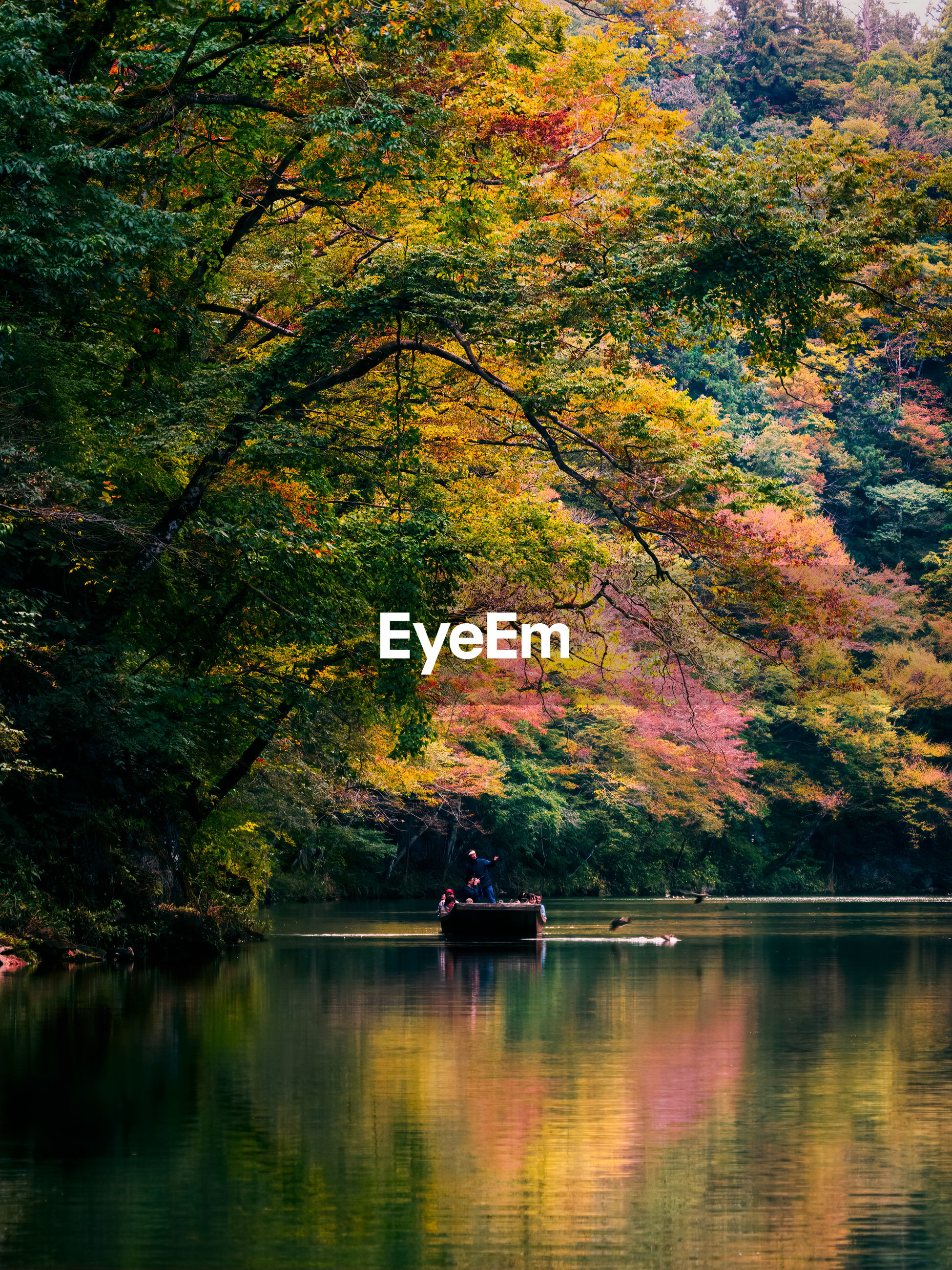 SCENIC VIEW OF LAKE IN AUTUMN