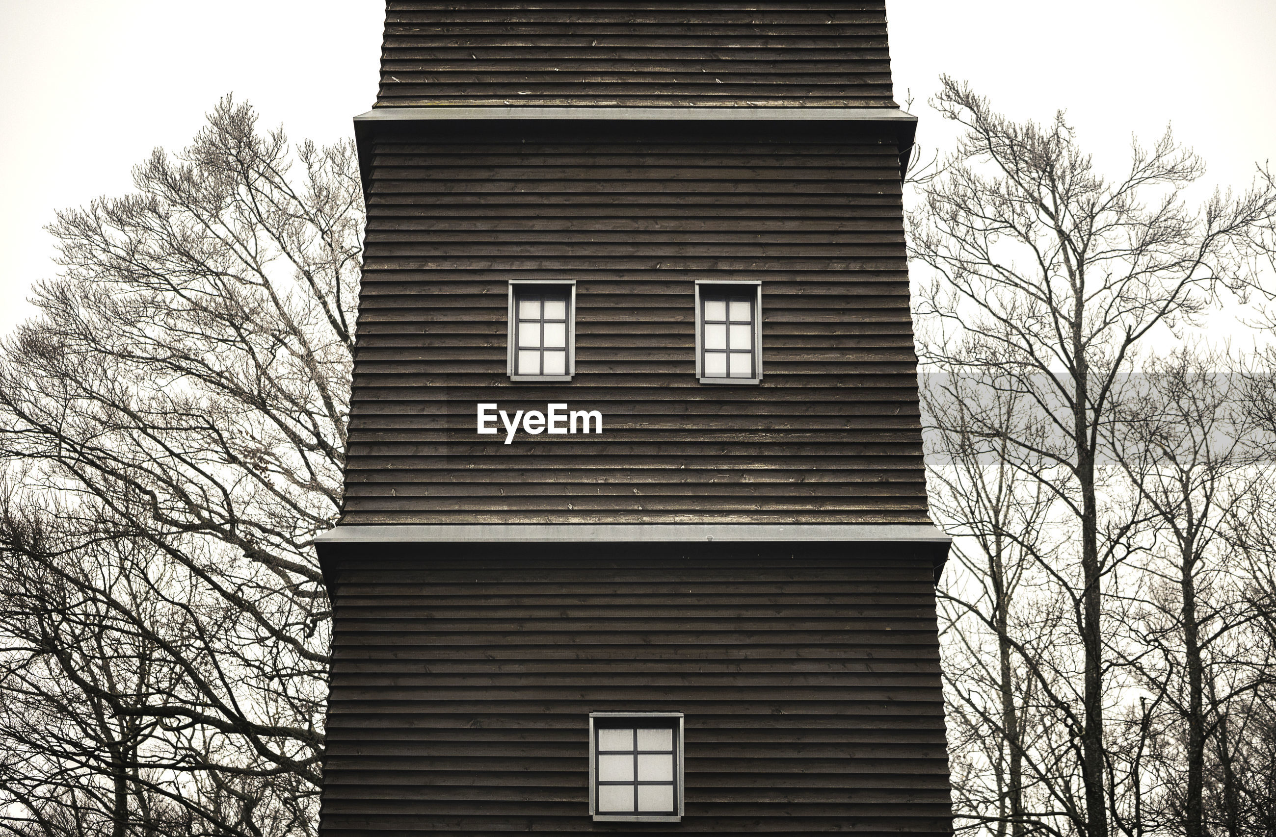 LOW ANGLE VIEW OF BUILDING AGAINST BARE TREES