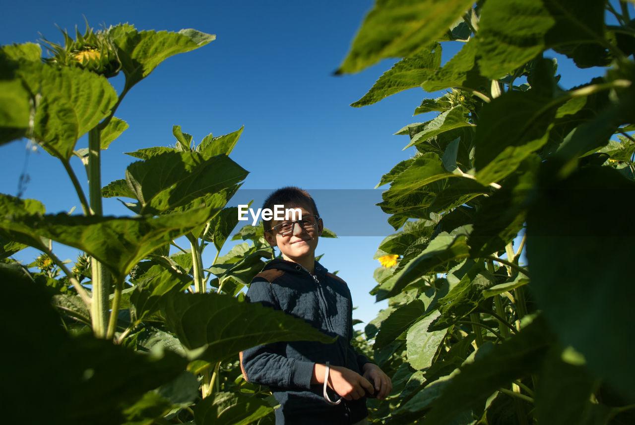 Portrait Of Smiling Boy Standing Amidst Plants Against Clear Blue Sky