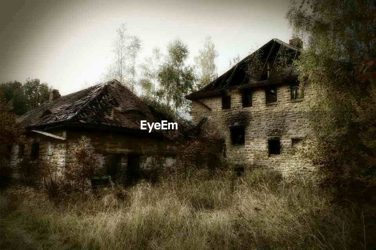 architecture, built structure, building exterior, tree, no people, house, day, grass, abandoned, outdoors, history, old ruin, sky, nature, low angle view, growth, landscape