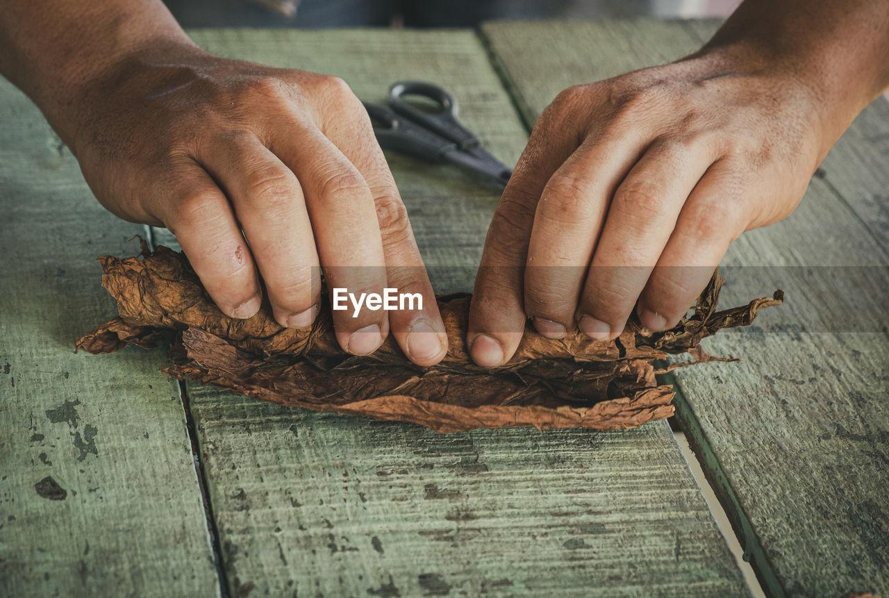 Cuban cigar manufacturer rolls a cigar out of a leaf.