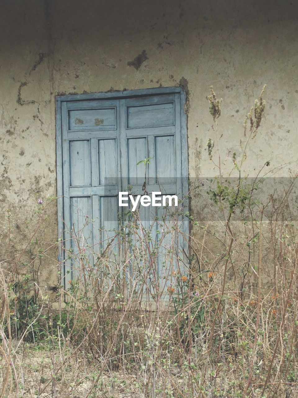 door, window, weathered, architecture, abandoned, house, entrance, doorway, built structure, no people, plant, damaged, day, bad condition, building exterior, open door, close-up, outdoors