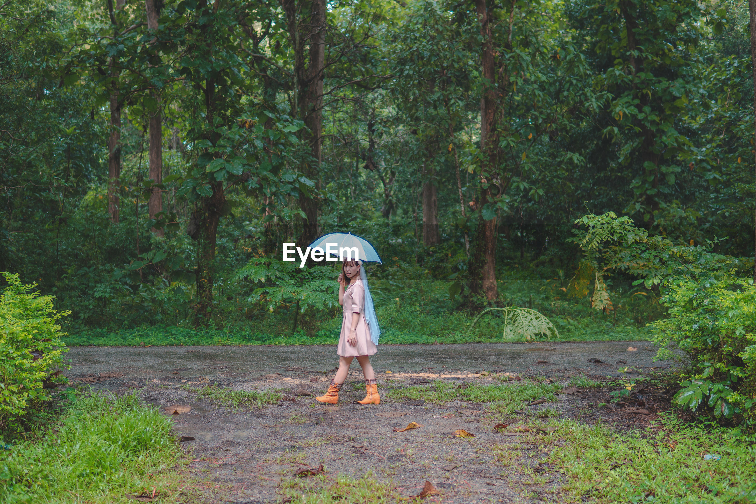 Side view of mid adult woman with umbrella walking on dirt road against trees in forest