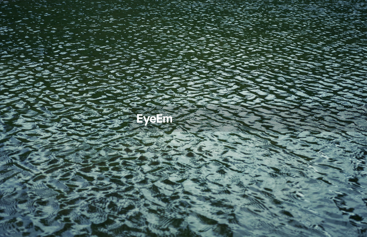 Full frame shot of water drops on ground