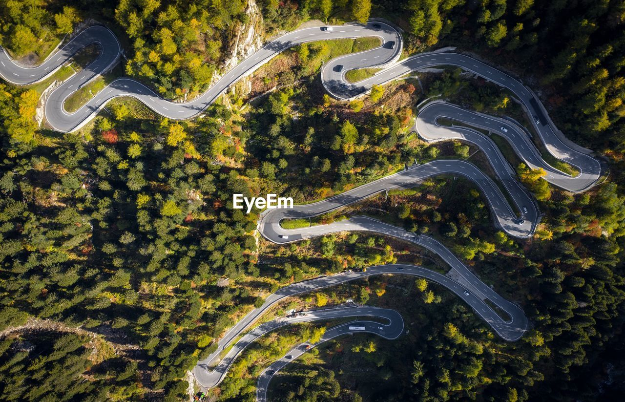 Directly above shot of winding road surrounded with trees