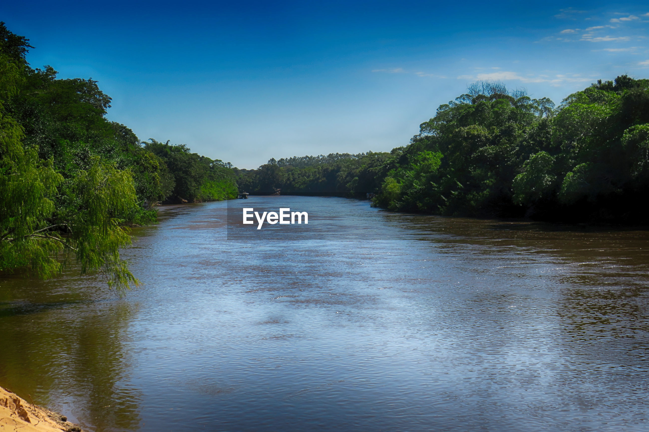 RIVER FLOWING AMIDST TREES AGAINST SKY