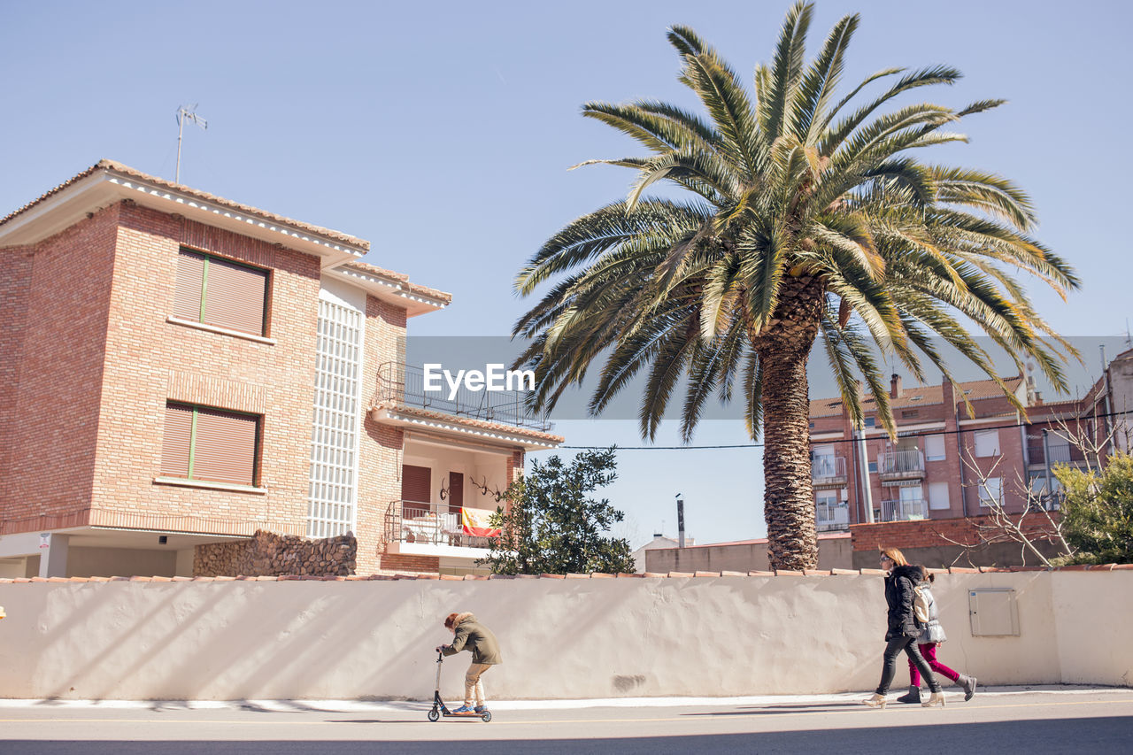 palm tree, real people, building exterior, architecture, built structure, clear sky, rear view, walking, men, tree, day, sunlight, outdoors, lifestyles, one person, sky, people
