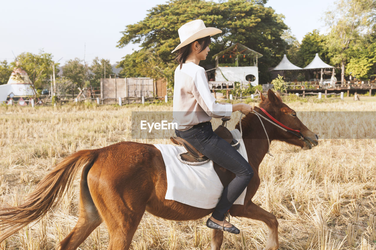 Woman Riding Horse On Field