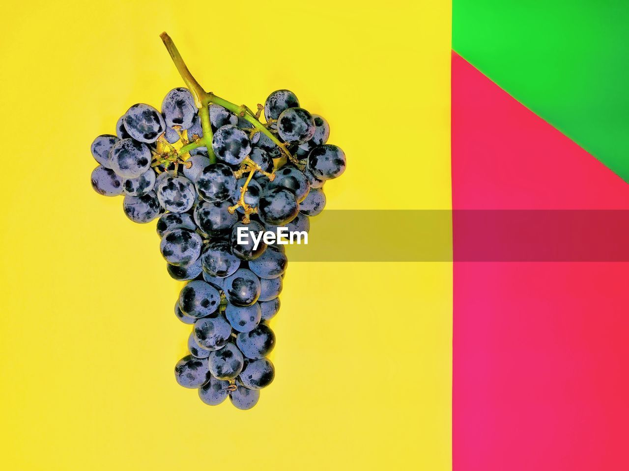colored background, yellow, indoors, healthy eating, fruit, food and drink, food, studio shot, no people, multi colored, berry fruit, wellbeing, freshness, close-up, yellow background, still life, grape, black color, pattern, copy space, ripe, purple