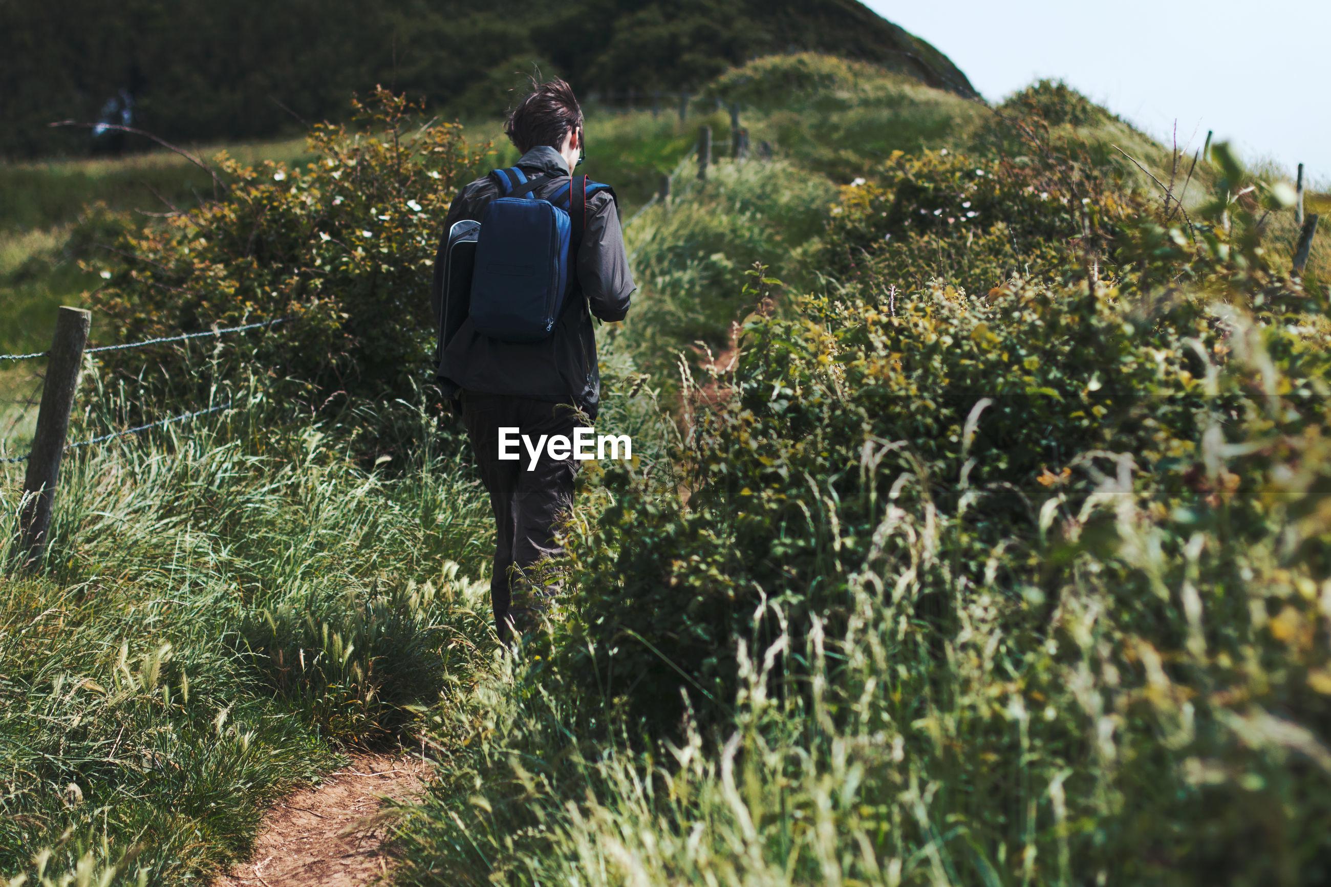Rear view of man walking amidst plants at field