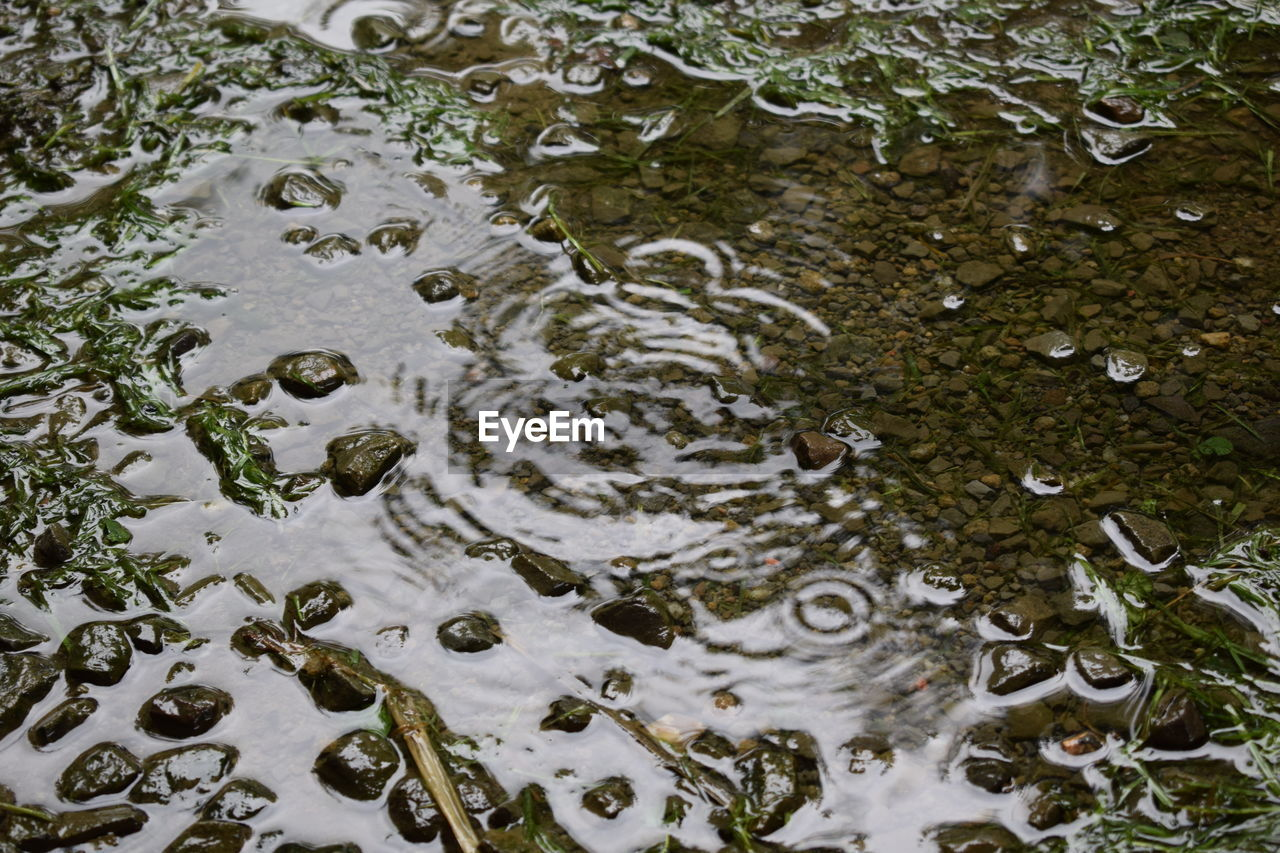 water, high angle view, no people, rippled, full frame, nature, day, outdoors, oil spill, puddle, close-up