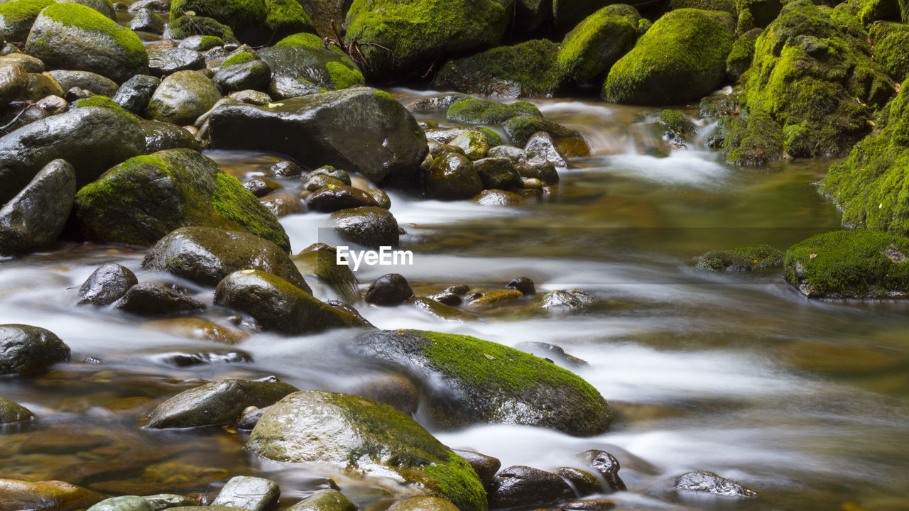 water, rock, solid, rock - object, flowing water, no people, motion, beauty in nature, river, long exposure, scenics - nature, nature, moss, day, stone, plant, blurred motion, stream - flowing water, outdoors, flowing, pebble