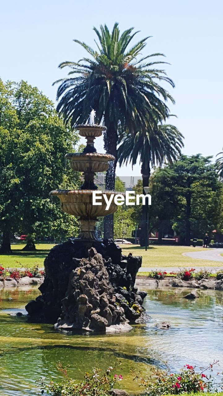 water, fountain, statue, sculpture, tree, art and craft, day, outdoors, travel destinations, beauty in nature, nature, no people, drinking fountain, growth, palm tree, scenics, sky