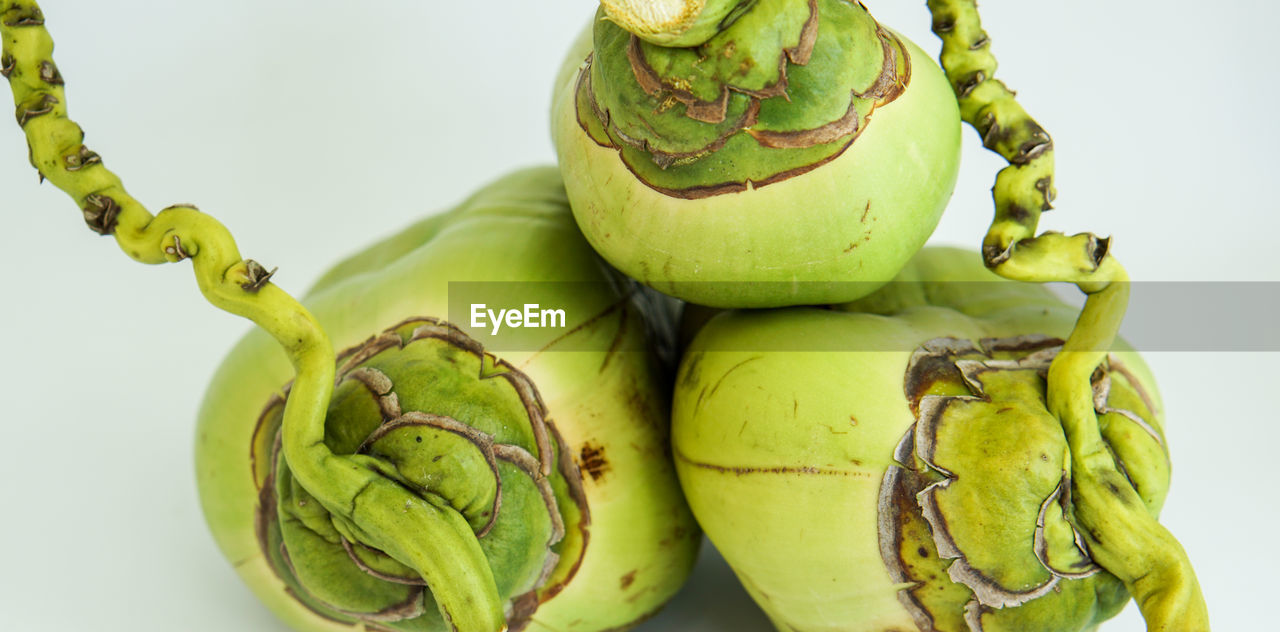 green color, food, food and drink, healthy eating, freshness, no people, close-up, fruit, vegetable, studio shot, indoors, day