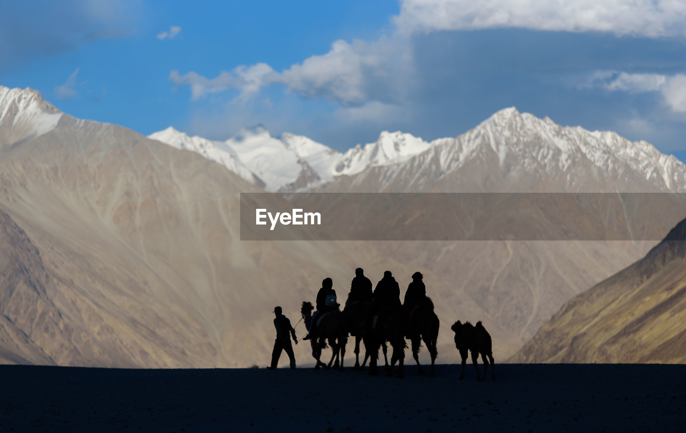 PEOPLE RIDING HORSE ON MOUNTAIN