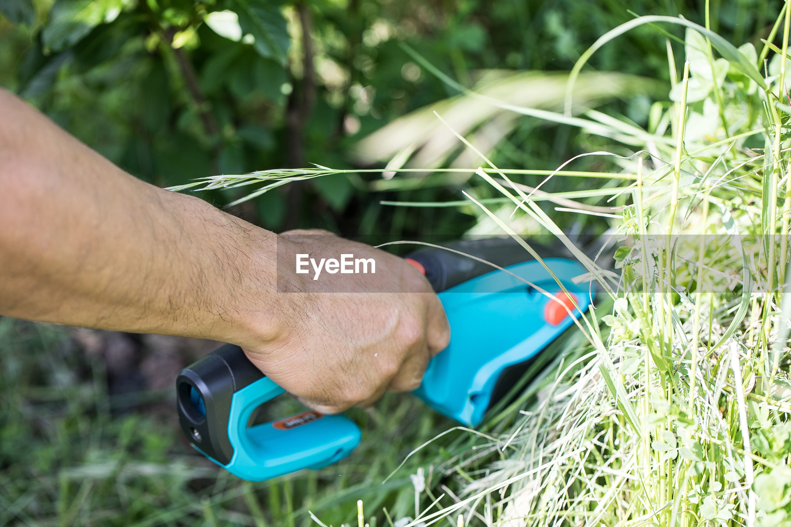 Cutting grass with electric hand device i the garden
