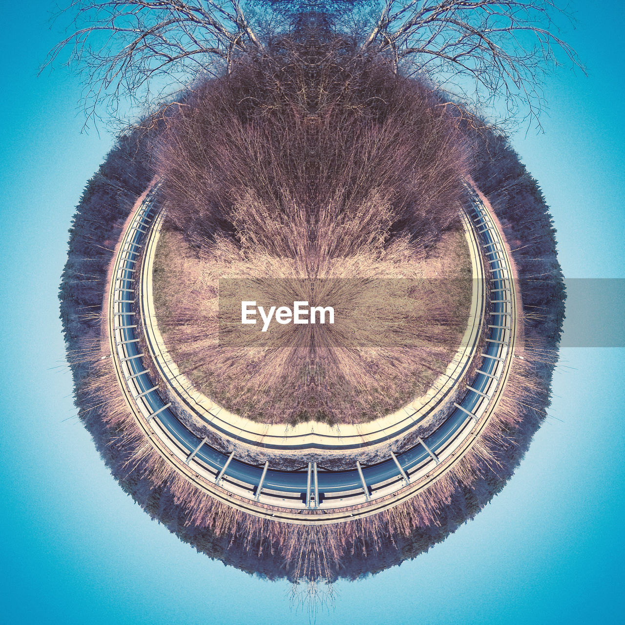 geometric shape, circle, shape, nature, architecture, sky, no people, built structure, tree, day, symmetry, digital composite, blue, plant, fish-eye lens, outdoors, low angle view, building exterior, pattern, design, blue background, directly below