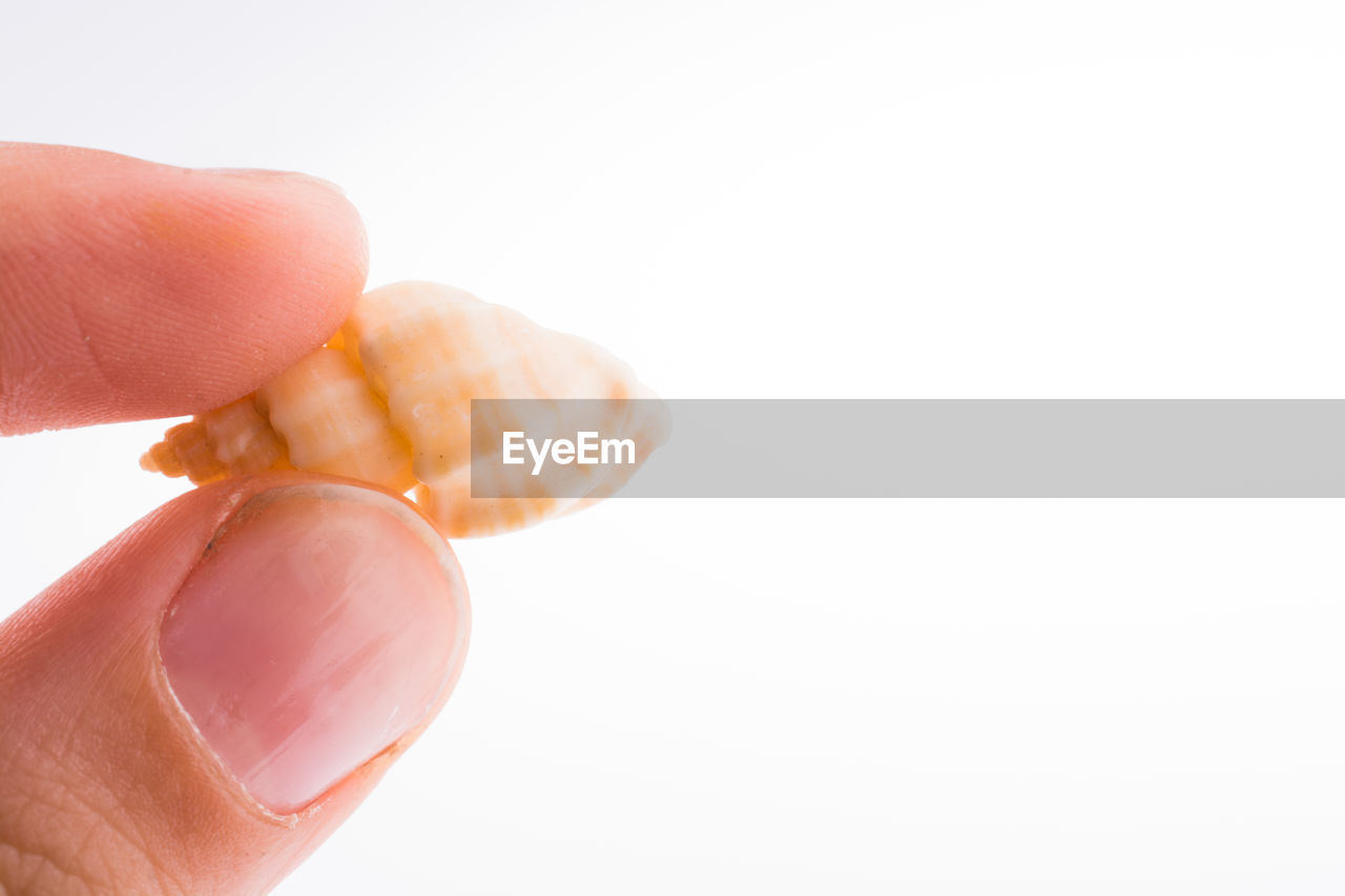 human hand, hand, human body part, finger, human finger, one person, white background, studio shot, unrecognizable person, copy space, body part, close-up, holding, indoors, food, food and drink, lifestyles, real people, freshness, nail, snack, temptation