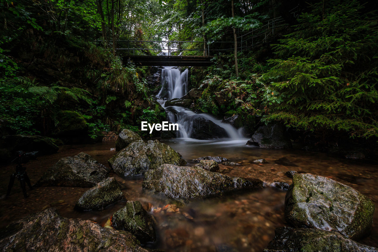 waterfall, forest, tree, rock - object, motion, scenics, beauty in nature, long exposure, nature, tranquil scene, idyllic, tranquility, no people, moss, outdoors, water, day