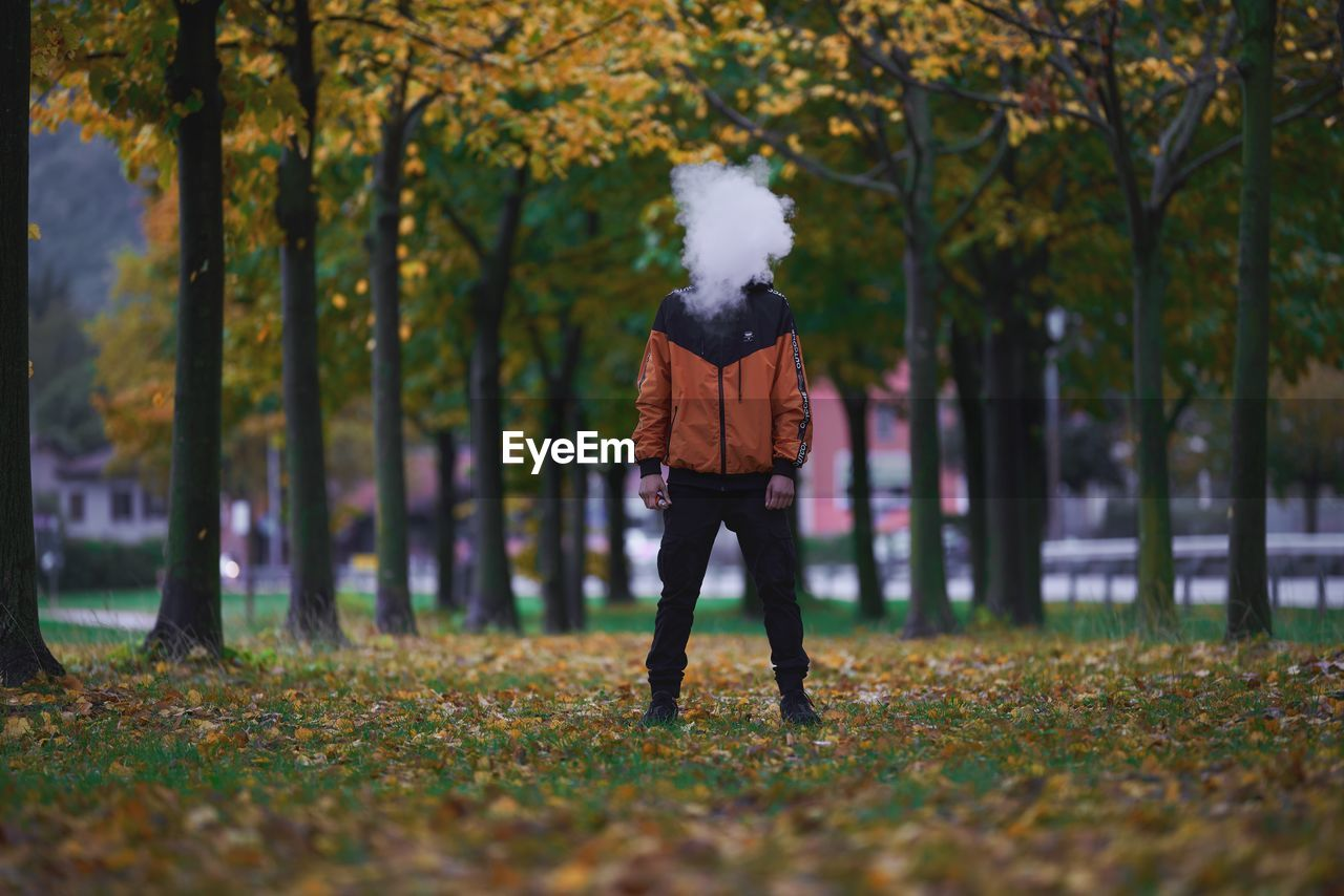 plant, tree, one person, real people, full length, lifestyles, leisure activity, nature, autumn, standing, casual clothing, day, land, adult, growth, rear view, young adult, walking, selective focus, warm clothing, outdoors, change, leaves, hairstyle