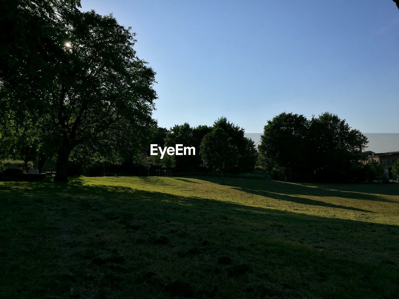 Scenic View Of Grassy Slope In Summer