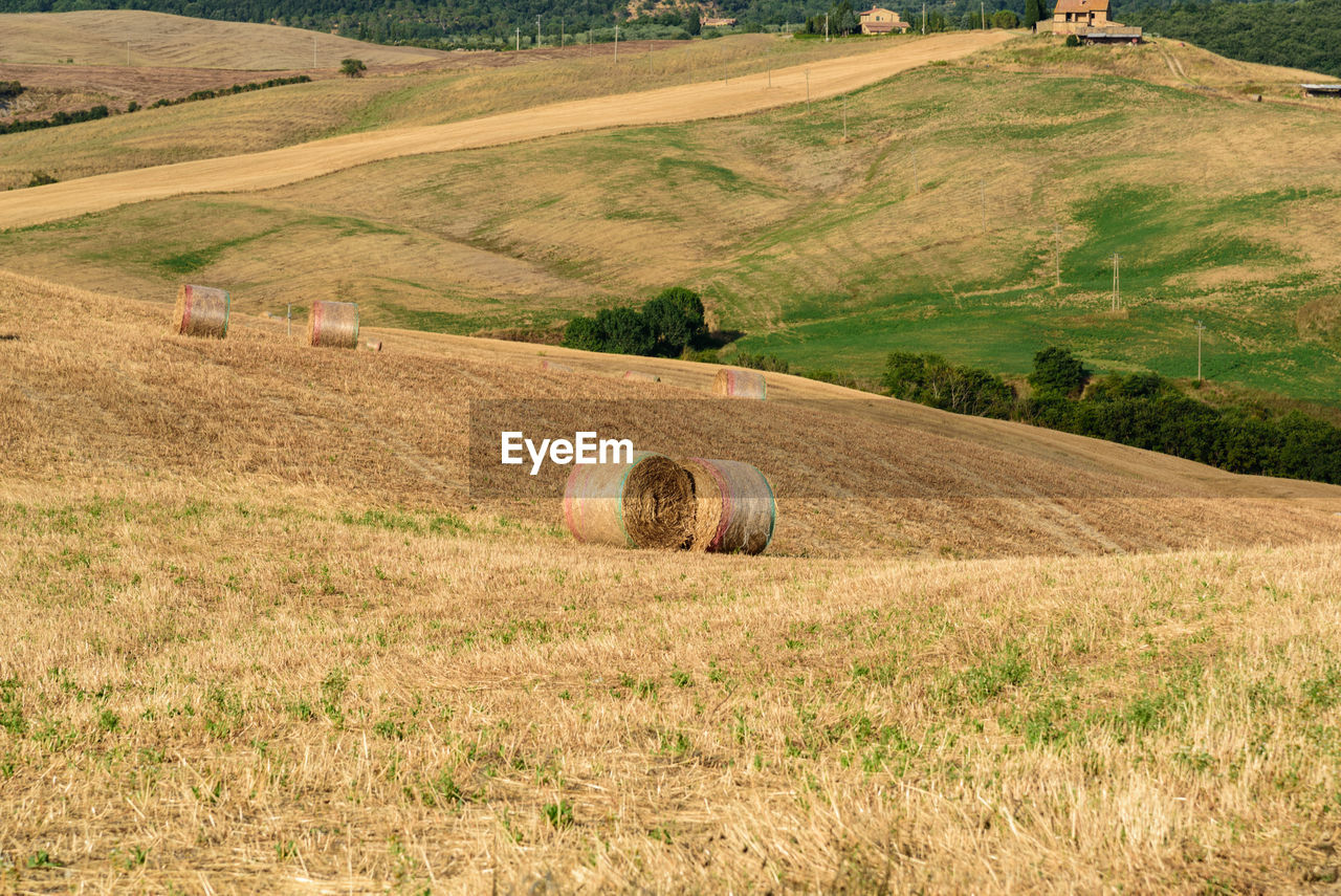 High Angle View Of Hay Bales On Field