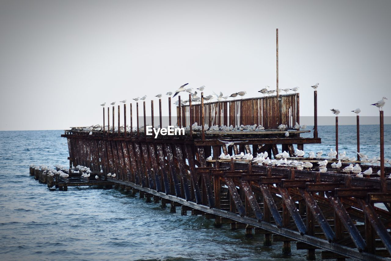water, sky, sea, clear sky, wood - material, transportation, nautical vessel, pier, nature, in a row, mode of transportation, architecture, no people, day, scenics - nature, built structure, waterfront, tranquility, horizon, horizon over water, wooden post, post, outdoors, groyne