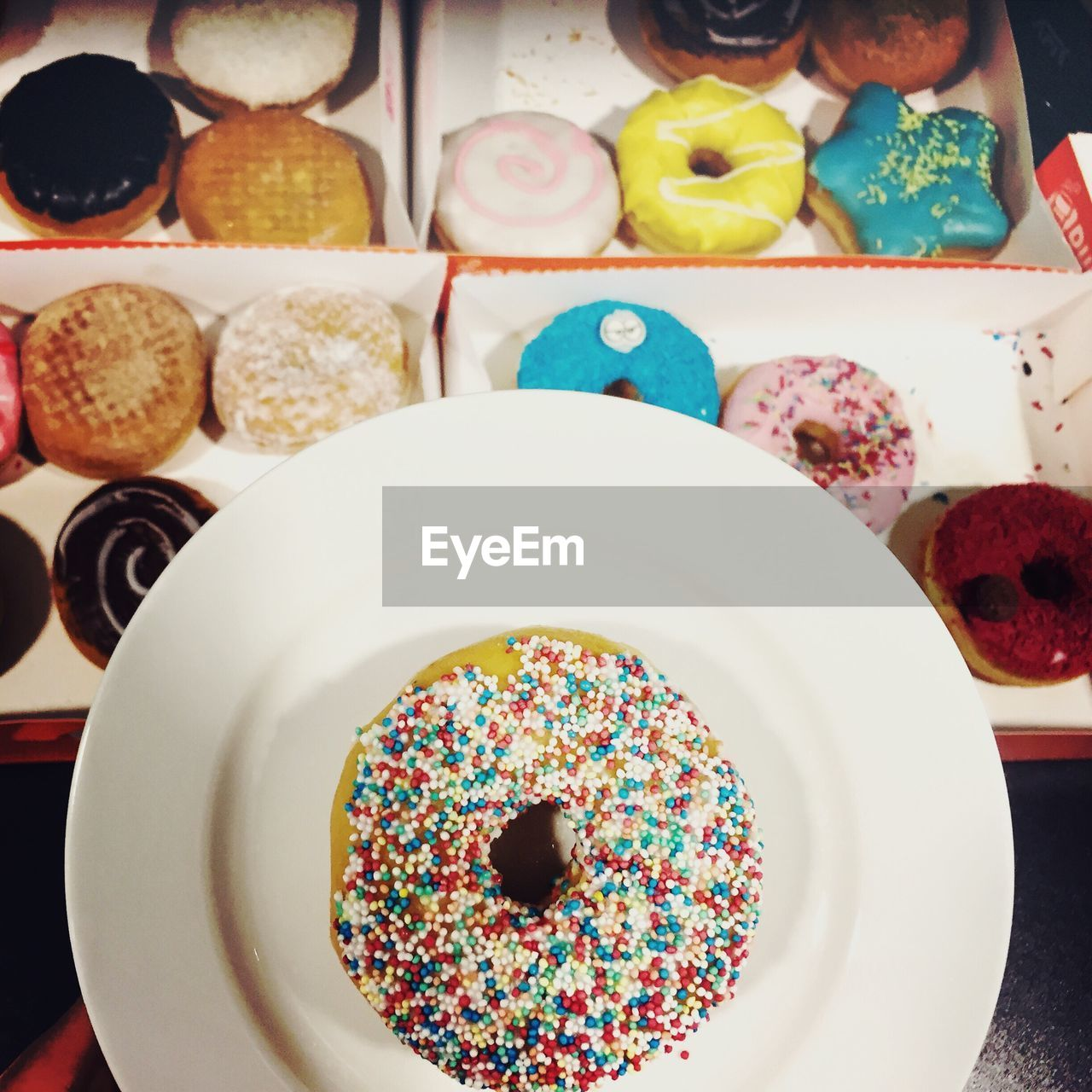 food and drink, food, plate, indulgence, sweet food, table, indoors, variation, unhealthy eating, multi colored, freshness, temptation, dessert, ready-to-eat, cake, high angle view, choice, directly above, no people, close-up, donut, day