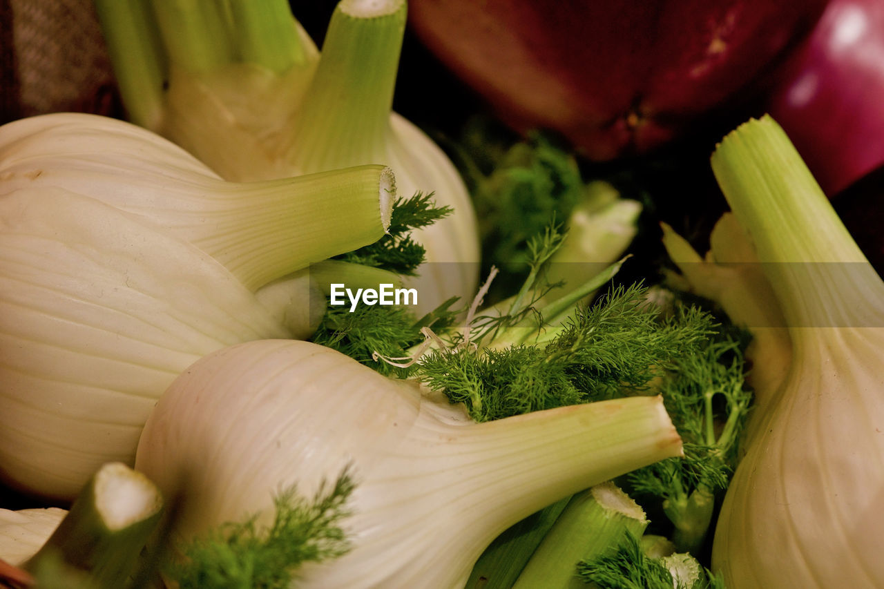 vegetable, healthy eating, food and drink, freshness, food, wellbeing, onion, close-up, fennel, no people, green color, herb, raw food, still life, indoors, spring onion, organic, ingredient, root vegetable, selective focus, chopped, vegetarian food