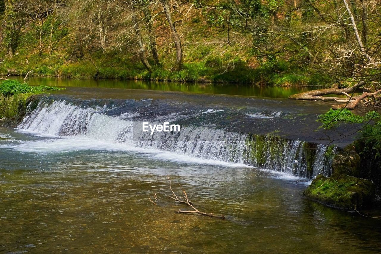 nature, water, beauty in nature, tranquil scene, tree, forest, tranquility, waterfall, scenics, day, no people, outdoors, motion, river, long exposure